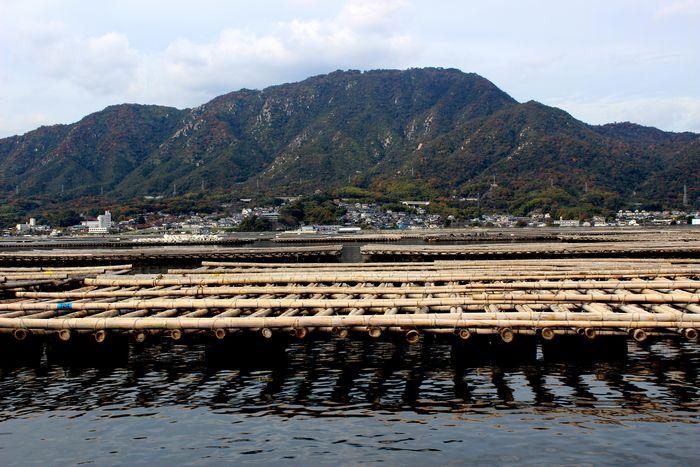 牡蠣筏② - コピー.JPG